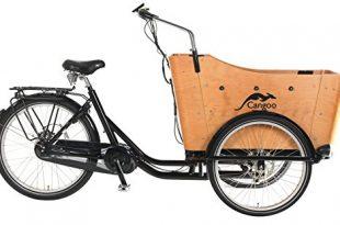 POPAL - elektrische Bakfiets - Cangoo Scoobi - Mittelmotor - 8 Gang Schaltung - E-Bike - Elektro Transportfahrrad Lastenfahrrad Kinder Transport