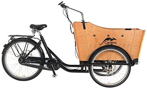 POPAL elektrische Bakfiets Cangoo Scoobi Mittelmotor - POPAL - elektrische Bakfiets - Cangoo Scoobi - Mittelmotor - 8 Gang Schaltung - E-Bike - Elektro Transportfahrrad Lastenfahrrad Kinder Transport